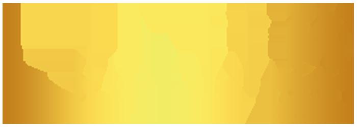 ایران برنز
